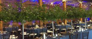 Wedding Decor Lexington KY